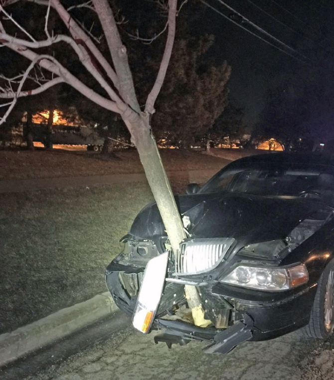 A 15' tree sticks out of the hood of a car. The driver was allegedly DUI. Photo credit: Roselle Police Department.